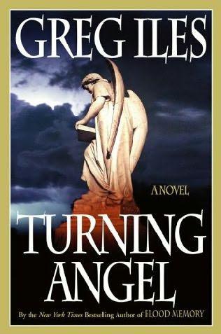2006: #44 – Turning Angel (Greg Iles)